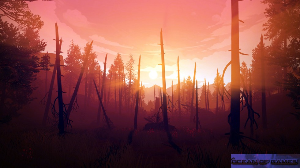 Firewatch Features