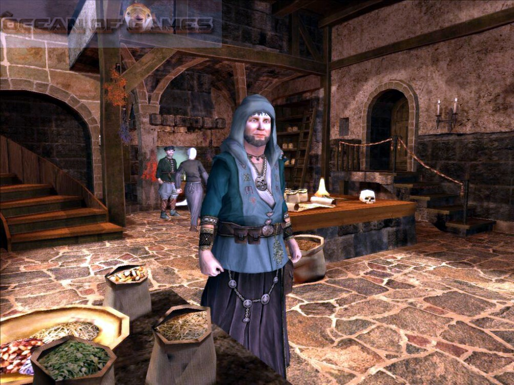 The Guild 2 Renaissance Setup Free Download