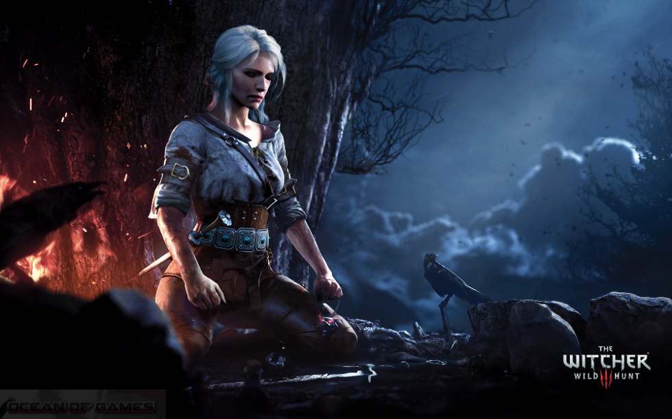 The Witcher 3 Wild Hunt With All Updates Features